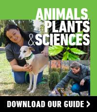 Animals Plants courses