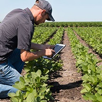 5 Benefits of a Career in Agriculture
